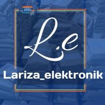 Logo lariza elektronik