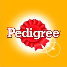 Pedigree Official Store Logo