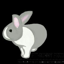 Fit-bunny Feed Logo