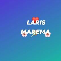 Logo Laris Marema