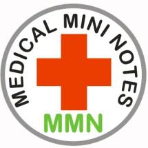Logo Medical Mini Notes Team