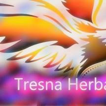 Logo tresna_cantik