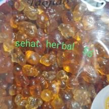 Logo sehat herbal 56