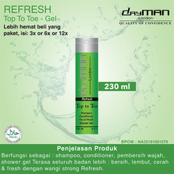 Dayman Top To Toe Refresh 230ml
