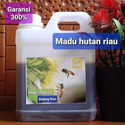 Madu ASLI Hutan Riau 100% original murni
