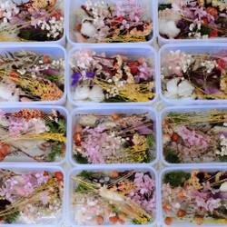 Dried Flower Mix | Preserved | Foliage | Bunga Kering Campur | DIY - M