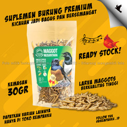 Maggot BSF Nusantara Insecpro Bird Suplemen Burung 30gr Vitamin Hewan