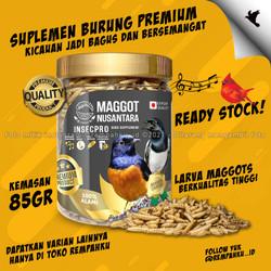 Maggot BSF Nusantara Insecpro Bird PREMIUM 70gr Vit Suplemen Burung
