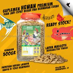 Maggot BSF Nusantara Insecpro BIASA 500gr Vitamin Ikan Suplemen Burung