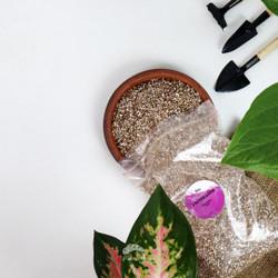 Media Tanam Vermiculite Premium-Perlite Media Tanam 300gr