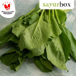 Sawi Hijau Conventional 250 gram Sayurbox