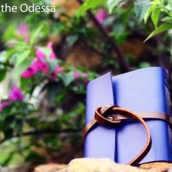 HIBRKRAFT JOURNAL - BASIC 2: THE ODESSA AGENDA