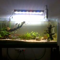 Jual Lampu Led Aquascape Aquarium 40cm 45cm Kota Bandung Toko Sale Tokopedia