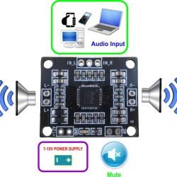 AU-04 Mini 2x10W Class D Amplifier PAM8610