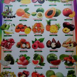 Jual Poster 4 Sehat 5 Sempurna Jakarta Selatan Toko Azzuras Tokopedia