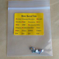 Bucal Tube Roth 1st Molar 0.22