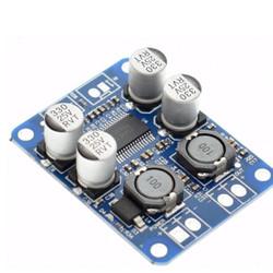 TPA3118 60W Mono Digital Audio Power Amplifier Board