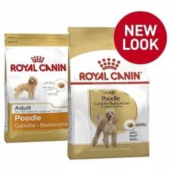 Royal Canin Poodle Adult 3 Kg - Promo Price