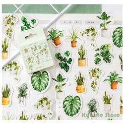 Sticker Deco Motif Tanaman Diary Journaling Bujo Scrapbook DIY Kaktus