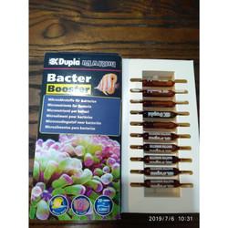 Dupla Bacter booster (makanan bakteria) Germany 1 vial