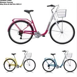 Jual Sepeda Polygon Wanita Murah Harga Terbaru 2020