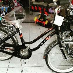 Jual Sepeda Mini Polygon Murah Harga Terbaru 2020