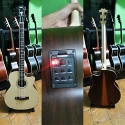 Bass akustik elektrik taylor custom Neck maple double run FISHMAN