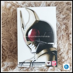 SHF Kamen Rider Agito Ground Form SS