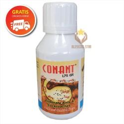 Conant obat umpan pembasmi semut, kecoa, dan rayap