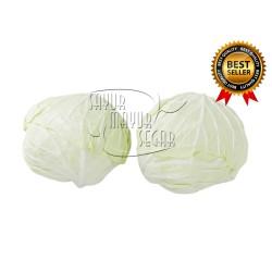 Sayur Kol / Cabbage / Kol putih super fresh Kemasan 1 kg