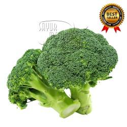 Brokoli / Broccoli Super fresh (Sayuran Kemasan 500 gram)