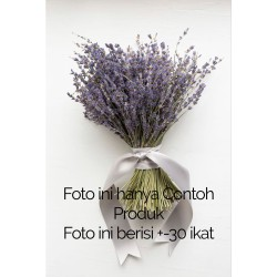 Bunga Kering Lavender Ungu Asli Dried Flower Purple Dekorasi Murah