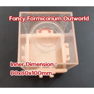 Fancy Formicarium Outworld