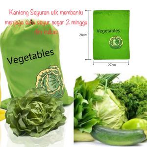 Reuseable Vegetable Fresh Bag / Tas agar Sayur Tetap Segar 2 Minggu