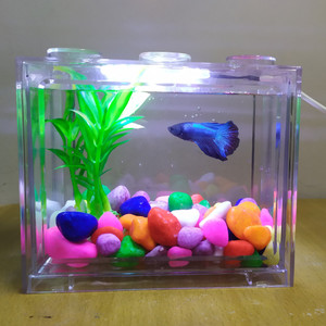 Aquarium mini lego akuarium mini akuarium lego aquarium cupang