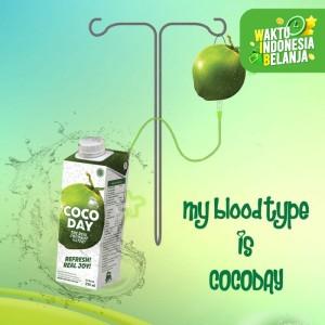 Cocoday air kelapa asli 250 ML X 24 psc