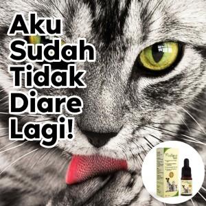 Obat diare mencret susah BAB Kucing Anjing Kelinci natural organik