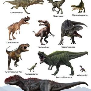 Buku, Poster Dinosaurus Pemakan Daging -Ori