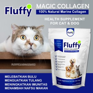 Harga suplemen penambah nafsu makan kucing fluffy kolagen protein vitamin | HARGALOKA.COM