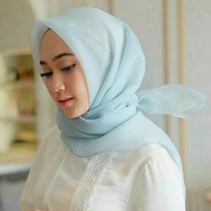 Harga hijab jilbab organza silk premium | HARGALOKA.COM