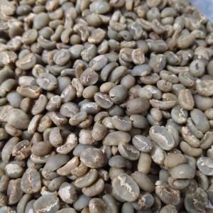 Harga green bean arabika toraja   HARGALOKA.COM