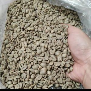 Harga greenbean specialty kopi arabica mandheling fullwash | HARGALOKA.COM