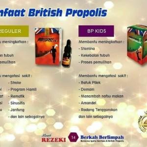 Harga jual british propolis jakarta gratis ongkos kirim jakarta | HARGALOKA.COM