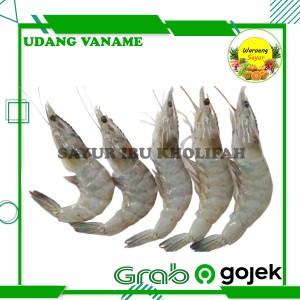 Harga udang vaname sedang super segar 250gr ikan hasil laut segar | HARGALOKA.COM