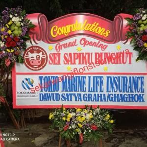 Harga toko bunga murah surabaya toko bunga papan murah | HARGALOKA.COM