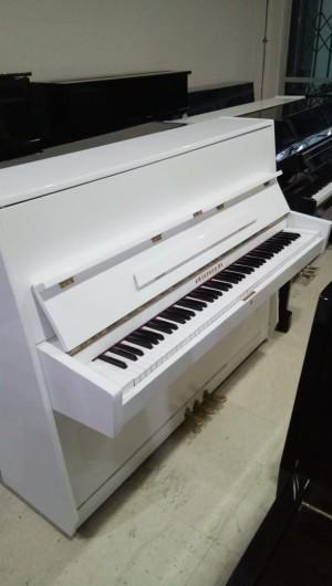Harga piano cristofori   HARGALOKA.COM