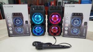 Harga speaker portable bluetooth fj 529dw plus | HARGALOKA.COM