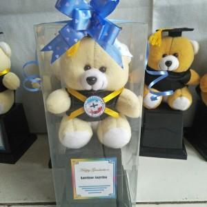 Harga piala boneka mika piala boneka mika piala hadiah wisuda boneka paial   | HARGALOKA.COM