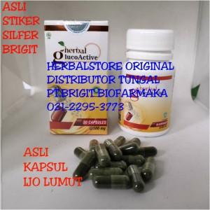 Harga glucoactive obat diabetes dan kencing | HARGALOKA.COM
