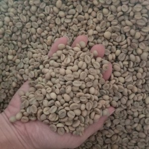 Harga green bean organik robusta | HARGALOKA.COM
